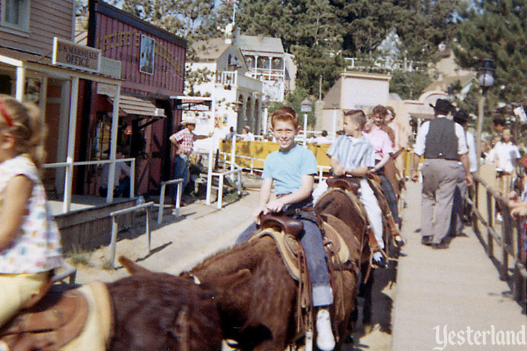 Mule Pack, Rainbow Ridge Pack Mules, and Pack Mules Through Nature's Wonderland