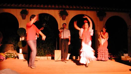 Photo of Flamenco dancers